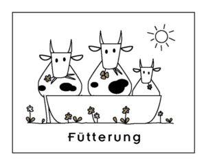 Kühe beim Grasen