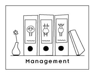 Darstellung Management
